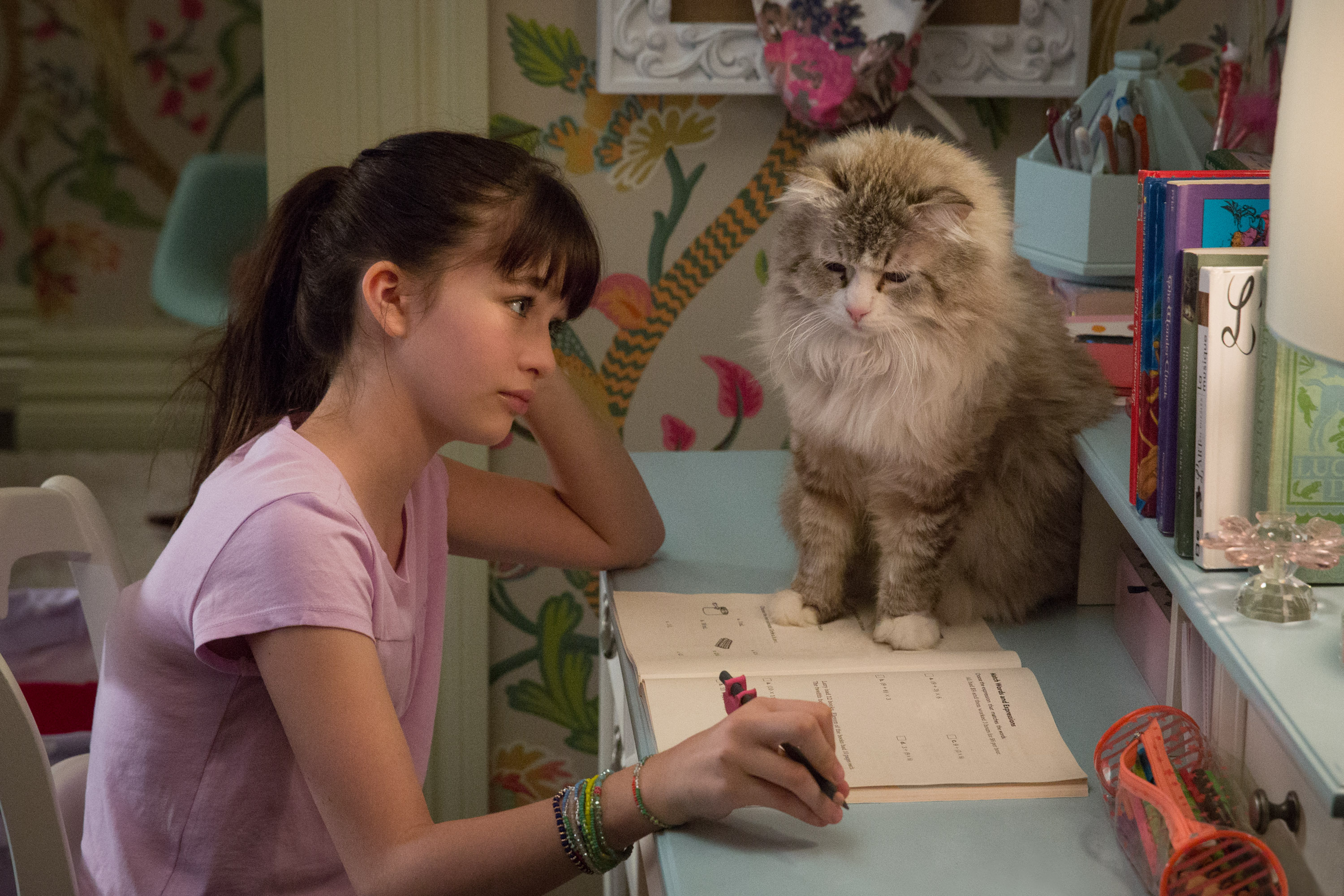 Melina Weissman and Mr. Fuzzy Pants star in Nine Lives. Photo courtesy: EuropaCorp